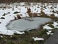 SH Winter 2016 js (24792275546).jpg