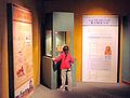 Sala dedicada al Antiguo Egipto.jpg
