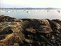 Salem, MA, USA - panoramio (54).jpg