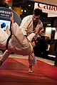 Salon de la photo 2010 Judo.jpg