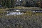 Salt Marsh at Hoffler Creek 3 LR.jpg