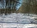Sambirs'kyi district, Lviv Oblast, Ukraine - panoramio (80).jpg