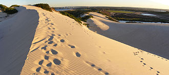 Cronulla sand dunes - Looking over the dunes, south towards Cronulla.