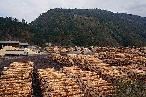 Saw industry storage place, municipality Sachsenburg, Carinthia, Austria