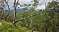Scenic scenery from a hike to Ella Rock, Sri Lanka.jpg