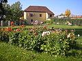 Schloss Ronneburg2.JPG