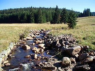 Schwarzwasser (Mulde) - Image: Schwarzwassertal 9 2006