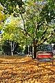 Seattle - Tashkent Park 01.jpg
