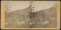 Section of Trestle Bridge on the New York, Boston & Montreal Railway, at East Tarry Town, N.Y, from Robert N. Dennis collection of stereoscopic views 2.png