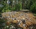 Selkäkangas cairn Nakkila Finland IMG 6566 68.jpg