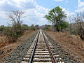 Sena Line close to Mutarara (4077096513).jpg