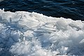 Shore Ice, Duluth 1 8 18 -winter -lakesuperior (38876881424).jpg