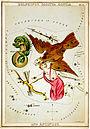 Adler, Delfin und Antinoos