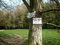 Signs on a tree - geograph.org.uk - 400868.jpg