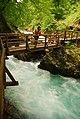Slovenia (11663791783).jpg