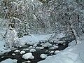 Snow at Ravens Rock - geograph.org.uk - 606051.jpg
