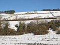 Snowy West Allen Dale below Corryhill - geograph.org.uk - 1755294.jpg