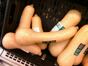 English: Butternut Squash pumpkins