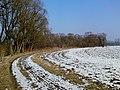 Sobieszów-Cieplice - panoramio.jpg