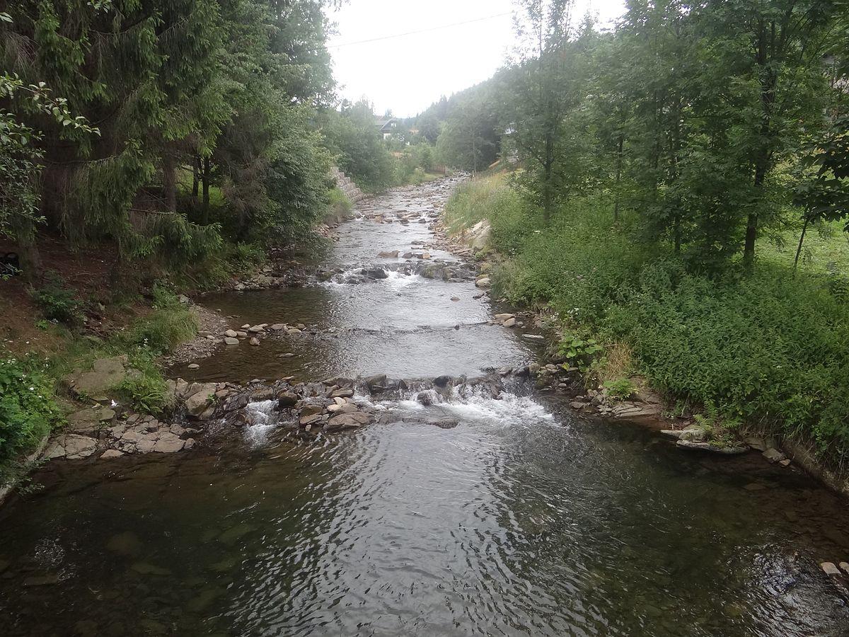 Rezerwat Romanka w Sopotni Wielkiej - Silesia. Positve ene