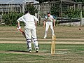 Southwater CC v. Chichester Priory Park CC at Southwater, West Sussex, England 014.jpg