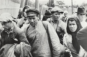 Soviet occupation of Bessarabia and Northern Bukovina - Refugees after the occupation