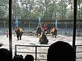 Spectacle Zoo Shanghai.jpg
