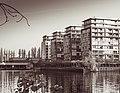 SpreeDovebrücke-20181107-1000154.jpg