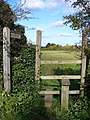 Stile at East Clandon - geograph.org.uk - 598601.jpg