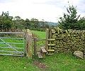 Stile on the Gritstone Trail - geograph.org.uk - 258314.jpg