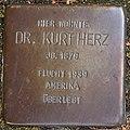 Stolperstein Dr. Kurt Herz (Schwelm).jpg