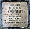 Stolperstein Salvador-Allende-Str 43 (Köpen) Georg Eppenstein.jpg