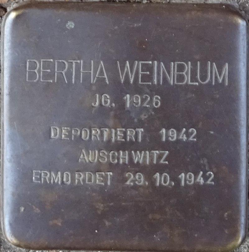 Stolpersteine Alsdorf Bertha Weinblum Robert-Koch-Strasse 29.jpg