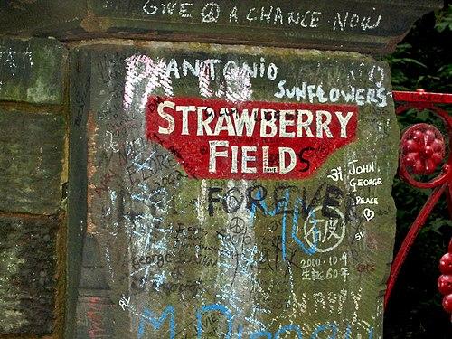 Strawberry fields text
