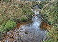 Stream on Colden - geograph.org.uk - 602452.jpg