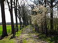 Strijbeekse Heide DSCF6588.JPG