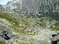 Studené doliny - NPR, Vysoké Tatry (4).JPG