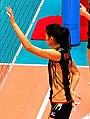 Sugiyama Sachiko, Japanese volleyball player.jpg