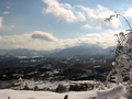 Sullo sfondo il Monte Volturino - Monti della Maddalena (Potenza).PNG