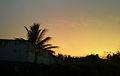 Sunset at Rajula Tallavalasa village.jpg