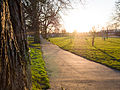 Sunset at Ruskin Park (13045764034).jpg