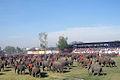 Surin Elephant Show 2009 DSC06213c.jpg