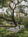 Swans at Pakuwon Amplitheatre - panoramio.jpg