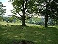 Swyncombe House - geograph.org.uk - 52355.jpg