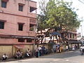 Thanamakhua Model High School - Howrah 070098.JPG