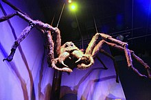 The Making of Harry Potter 29-05-2012 (Aragog).jpg