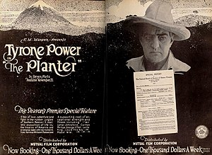 The Planter - Contemporary advert