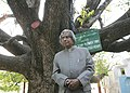 The President, Dr. A.P.J. Abdul Kalam is seen under Star Flower Tree which is aged over 250 years old while going around the Kutho Daw Pagoda in Mandalay in Myanmar on March 10, 2006.jpg