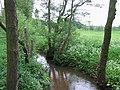 The River Worfe near Ryton, Shropshire - geograph.org.uk - 442527.jpg