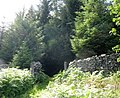 The junction of the Penmaen path and the Roman Road - geograph.org.uk - 496103.jpg